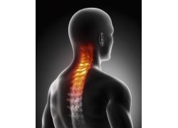 """一招矫正脊椎,和脊椎病说""""拜拜"""""""