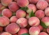 这些水果你在吃吗,减肥有效让你瘦下来
